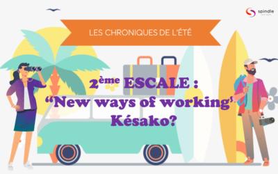 """Les chroniques de l'ete 2eme escale : """"New ways of working"""" Késako?"""